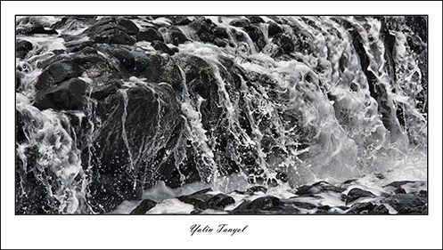 Frame_IMG_2615CANVAS copy